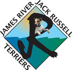 James River Jack Russell Terriers